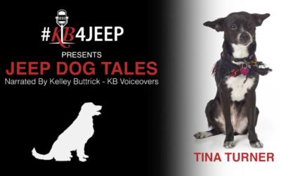 Jeep Dog Tales – Tina Turner